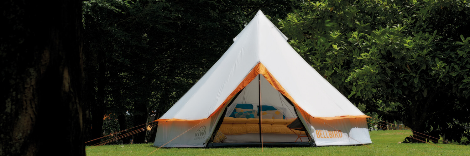 Camping Trends